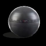 Swiss Ball & Ab Wheel Pack_